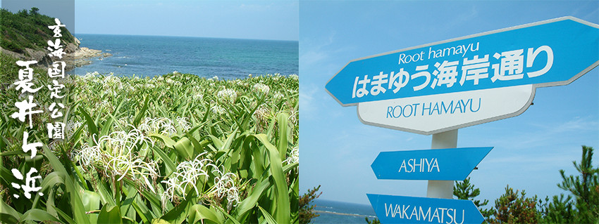 玄海国定公園 夏井ヶ浜